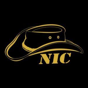 محصولات NIC